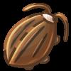 Cocoaroach